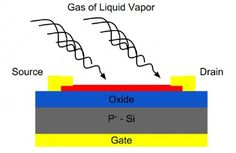 Researchers build atomically thin gas and chemical sensors