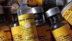 Brasil volta a exportar vacina contra febre amarela, diz governo. O governo brasileiro vai voltar a exportar a vacina contra a febre amarela. O anúncio foi