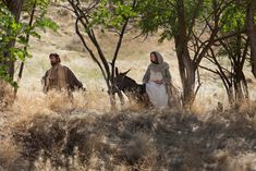 """Watch and share a short video depicting Luke in the Bible, """"Mary and Joseph Travel to Bethlehem."""" Also see related text and photos. Journey To Bethlehem, Lucas 2, Jewish Girl, Fathers Say, Christian Movies, Christian Art, Scripture Study, Holy Ghost, Daughter Of God"""
