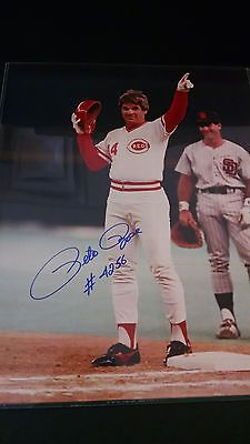 9797c1590 Pete-Rose-Cincinnati-Reds-4256-Hits-Hand-Signed-Autographed-16x20-Photograph