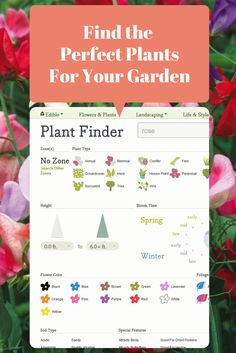 Plant Finder Takes the Guesswork Out of Gardening --> http://www.hgtvgardens.com/plant-finder/?soc=pinterest