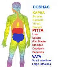 Ayurveda Health Education and Services - Ayurveda Health Care Blog