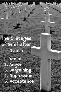 The Kübler-Ross model identifies the five stages of grieving, popularly known by the acronym DABDA (and can applied to any life-changing situation, not just death):    Denial  Anger  Bargaining  Depression  Acceptance