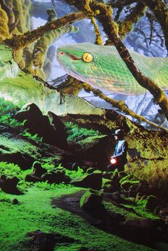 Emerald Cave, John Turck Collage