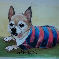 Furry Paw Fam let's send Lil' Armani PAWsitive Vibrations!!! Armani we send lots of PAW love your way and hope you feel as PAWtastic as you look in both your Furry Paw Portraits!!! #getwellsoon #love #chihuahuas #furrypawlife www.furrypawpics.com