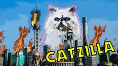 News Videos & more -  Watch the Funniest Videos on youtube - TSC Episode 16 - CATZILLA PART 1 - SHANGHAI WILL BURN - funny cat videos #Funny #videos on #youtube #Music #Videos #News Check more at http://rockstarseo.ca/watch-the-funniest-videos-on-youtube-tsc-episode-16-catzilla-part-1-shanghai-will-burn-funny-cat-videos-funny-videos-on-youtube/