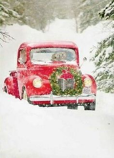 My husband always puts wreaths on our trucks and cars! So fun and festive! We get a lot of waves and smiles...nice!