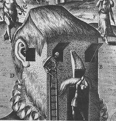 low-country:  Theodoor Galle - Adspectus Incauti Dispendium...