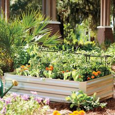 A raised garden bed is easier to work and maintain than conventional beds and lets you plant vegetables or flowers closer together, producing higher yields. This steel garden bed comes in 2 sizes and is all weather.