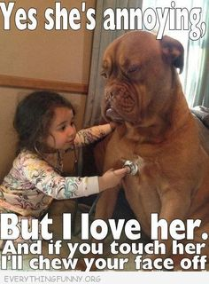 funny caption pictures little girl big dog yes shes annoying but i love her touch her rip your face off