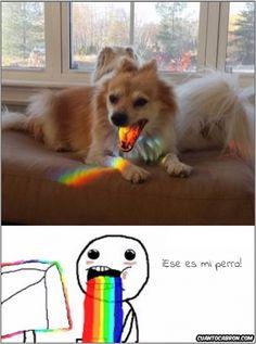 La mascota de Puke Rainbows        Gracias a http://www.cuantocabron.com/   Si quieres leer la noticia completa visita: http://www.estoy-aburrido.com/la-mascota-de-puke-rainbows/