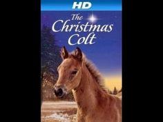 O Potro De Natal - filmes de drama completos dublados