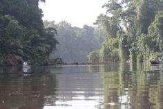 Tortuguero National Park, Limon es tranquilo. Usted puede relajarse a caballo por el agua.