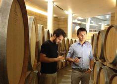 Lo staff tecnico degusta i vini in affinamento. 15.10.2013