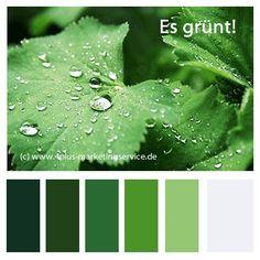 Maigrüne Farbpalette.