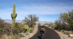 Saguaro National Park Travel Guide - Expert Picks for your Saguaro National Park Vacation