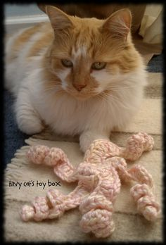 Crocheted Ferret Or Cat Toys