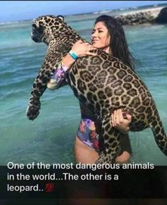 Apr 2019 - Are you an animal lover? Here you will find different animals from all over the world. Search for your favourite animal and save it on one of your boards. See more ideas about Animals, Animals beautiful and Cute animals. Animals Of The World, Animals And Pets, Baby Animals, Funny Animals, Cute Animals, Nature Animals, Beautiful Creatures, Animals Beautiful, Tierischer Humor
