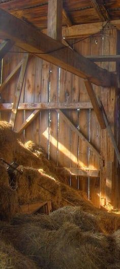 The hayloft on our farm was where our mama cat had her kittens. Hidden somewhere between all the bales of hay