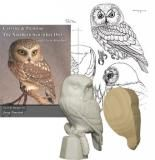 SAW-WHET OWL KIT [SP-KTJ1580] Jerry Simchuk Complete Bird Carving Kits Each kit comes with the essentials needed to start your carving. Jerry has provided a step-by-step process to making a beautifully finished piece. Included in your kit is a Carving & Painting Book, Pattern, Tupelo Cut-out, and a Reference Cast
