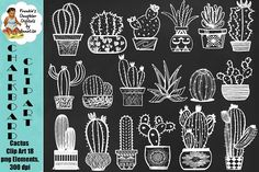 Cactus Chalk Clip Art, 18 png files by FrankiesDaughtersDesign on @creativemarket