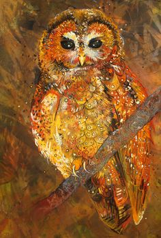 Northern Spotted Owl. pastel on paper