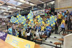 Fahnen und Flaggen von bannerstop.com für einen Handball Verein.