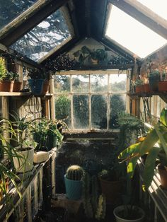 Dirty fun - a greenhouse/potting shed framed around old windows... shouldn't be too hard to build...