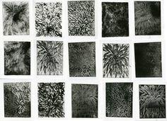 Série des Dahlia, gravure au sucre
