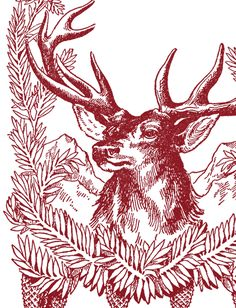 Free Vintage Christmas Pictures – Deer