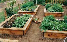 Gardening In Small Spaces: Container Gardens & Raised Beds