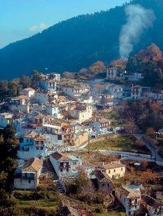 Kastanitsa village, Arcadia pref. (Peloponnese)