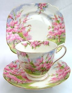 "Royal Albert ""Blossom Time"" I have a set of this for my girls. I can imagine sitting around with our favorite tea set, drinking tea, and talking about their boyfriends. :o) by simone"