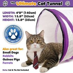 The ultimate cat tunnel is now at 15% off from Amazon using the code PETSJULY. Order now and have lots of fun! http://www.amazon.com/Ultimate-Cat-Tunnel-Innovative-Collapsible/dp/B00OPHX114/