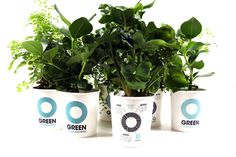 Ogreen Clean Machines New concept #vital #clean #green