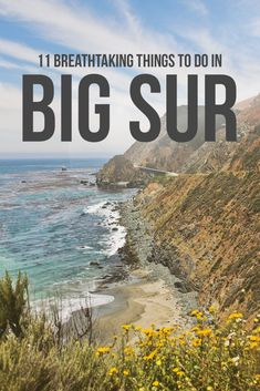 What to Do in Big Sur - 11 Breathtaking Things to Do and Tips for Your Trip // Local Adventurer Big Sur California, California National Parks, Visit California, California Travel, New York Travel, Travel Usa, Big Sur Coastline, California Tourist Attractions, Travel Oklahoma