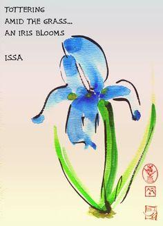 Issa My favorite flower is an Iris.