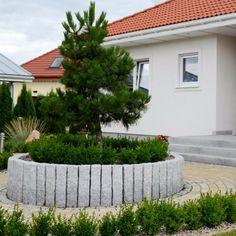 granit-palisaden-strauch-baum-gewoehnlicher-buchsbaum