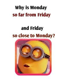 Weekend Quotes : QUOTATION – Image : Quotes Of the day – Description Best Funny minions october 2015 quotes AM, Saturday October 2015 PDT) – 10 pics Sharing is Caring – Don't forget to share this quote ! Hate Monday Quotes, I Hate Mondays, Monday Humor, Funny Monday, Weekend Quotes, Monday Friday, Morning Quotes, Happy Monday, Tgif