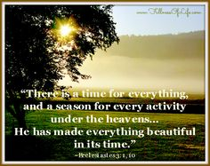 There is a time for everything... He has made everything beautiful in His Time