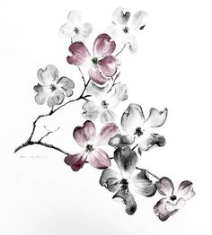 floral illustration black and white watercolor - Google otsing