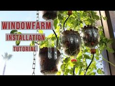 Window Farm Installation Tutorial   DIY Window Hydroponics for Any Horticulture Garden - YouTube