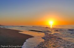 St. George Island, Florida - Beautiful beaches that are never really crowded, watching dolphin swim by every morning... absolute heaven on earth!
