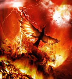 In Ancient Greek folklore, a phoenix (/ˈfiːnɪks/; Ancient Greek: φοῖνιξ, phoînix) is a long-lived bird that cyclically regenerates or is otherwise born again. Real Phoenix Bird, Phoenix Animal, Fantasy Dragon, Fantasy Art, Red Bird Tattoos, Mythical Birds, Flame Tattoos, Fire Tattoo, Fire Image