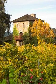On a Coastal California road trip, turn inland north of San Francisco to visit the wineries in the Napa Valley. This photo: V. Sattui Winery in Oakville, CA