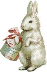 vintage illustration - rabbit
