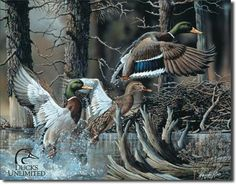 Ducks Unlimited Beaver Pond Tin Sign FT-1204 $12.99