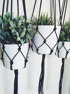 Macrame Plant Hanger, Hanging Planter Macrame Plant Hanger – Black Plant Hanger – Hanging Planter – Indoor/Outdoor Plant Hanger by Pot Hanger, Decoration Plante, Green Decoration, Hanging Planters, Hanging Plant Diy, Succulent Hanging Planter, Hanging Flower Pots, Diy Hanging Planter Macrame, Indoor Plant Hangers