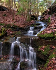 """Sam Calhoun on Instagram: """"Another of the beautiful cascades I found on my early January hike in Bankhead National Forest, AL.  #explore #getoutstayout  #optoutside…"""""""