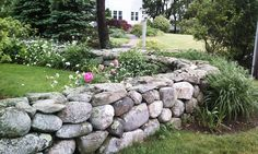 A true sign of a natural New England Landscape: A dry stacked stone wall.